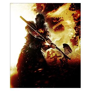 Dragon's Dogma. Размер: 25 х 30 см
